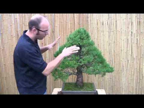 Peter Warren Introduction to Wiring  Part 1