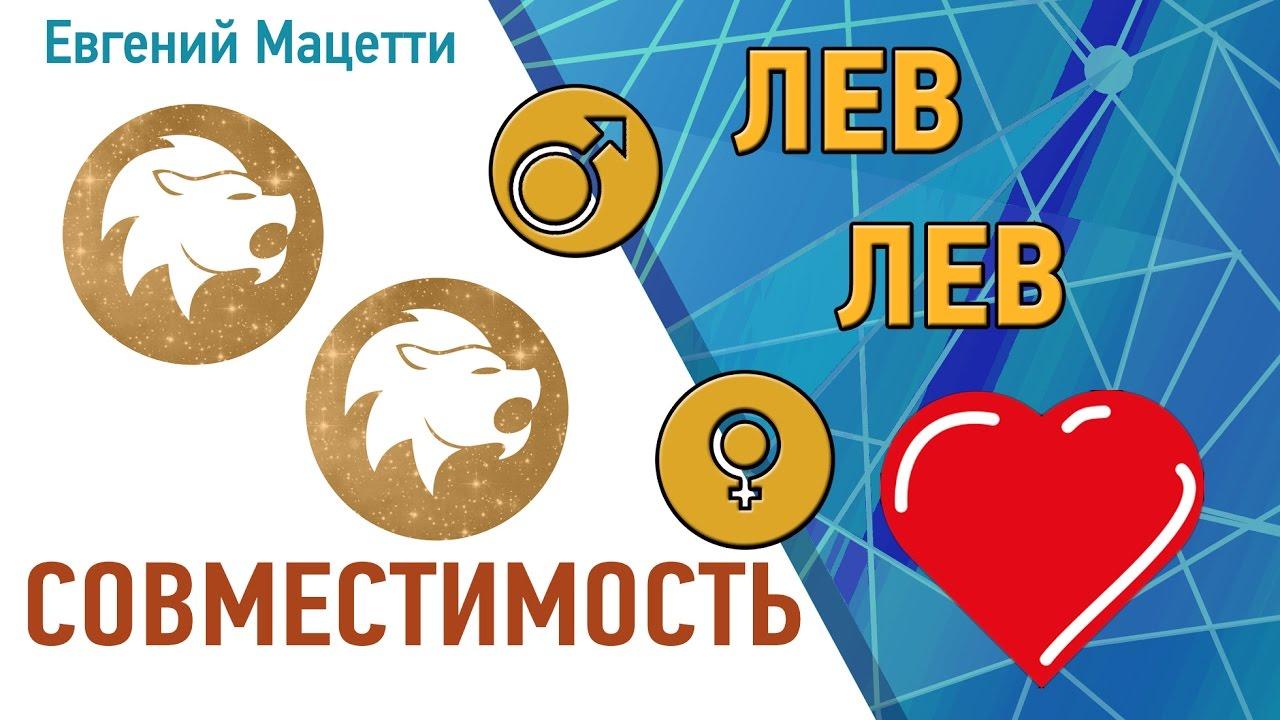 Лев и Лев. Гороскоп совместимости ♥ Любовный и сексуальный гороскоп