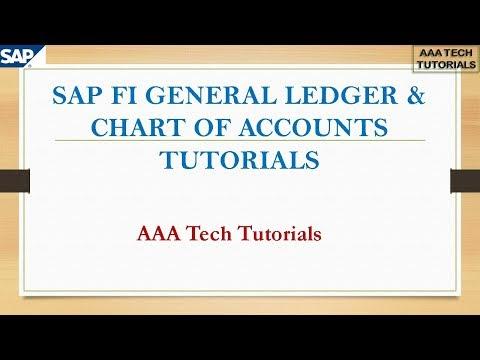 SAP FI General Ledger & Chart of Accounts Tutorials