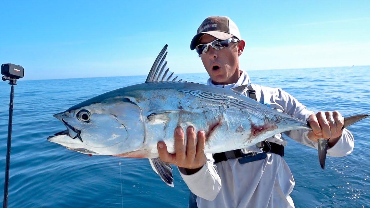 Most epic bonito blitz ever ft lakeforkguy youtube for Take me fishing org