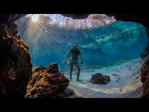 Found Crystal Clear Swimming Spot in Florida! (Beware Alligators) | DALLMYD