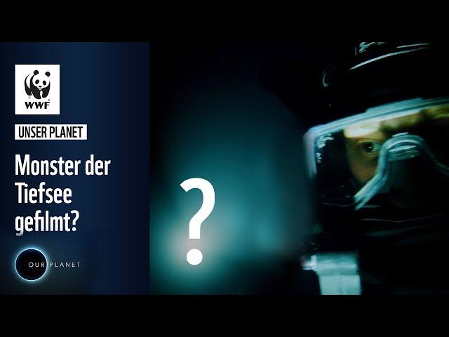 Monster in der Tiefsee gefilmt? | WWF Unser Planet