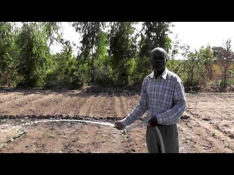 How to install a solar water pump for agricultural irrigation in Malawi, Africa