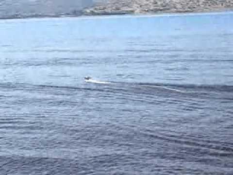 RC Stealth Speedboat