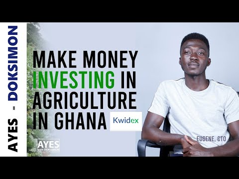 Make Money Investing in Agriculture in Ghana Through Kwidex || AYES || Ghana Episode 3 pt 2