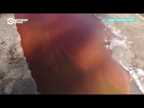 Экологическая катастрофа в Норильске: разлилось 20 тыс. тонн мазута