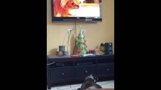 Jack watches Beverly Hills Chihuahua 3