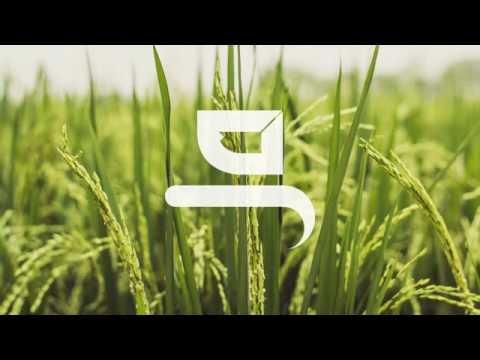 Kidung Alu - Instrumental Music - M Lutvi Binsimin