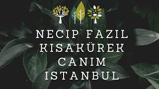 Necip Fazıl Kısakürek Canım İstanbul Seslendiren Tugay Doğan
