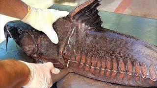 thai-food-giant-ripsaw-catfish-bangkok-seafood-thailand