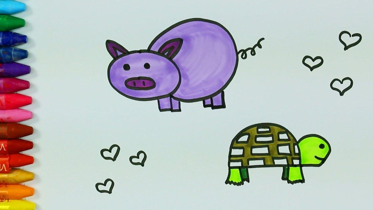 Domuz çizimi Nasıl Yapılır Kaplumbağa Nasıl çizilir