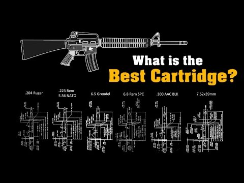 What is the Best Cartridge for the AR-15? ~ Rex Reviews SYSTEMATIC BREAKDOWN