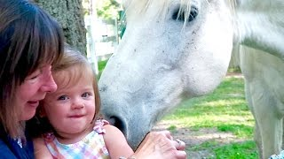 FRIENDLIEST HORSE IN THE WORLD!