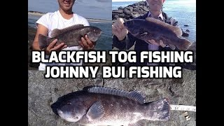 Jetty Blackfish Tog Fishing, NJ 10/14/16