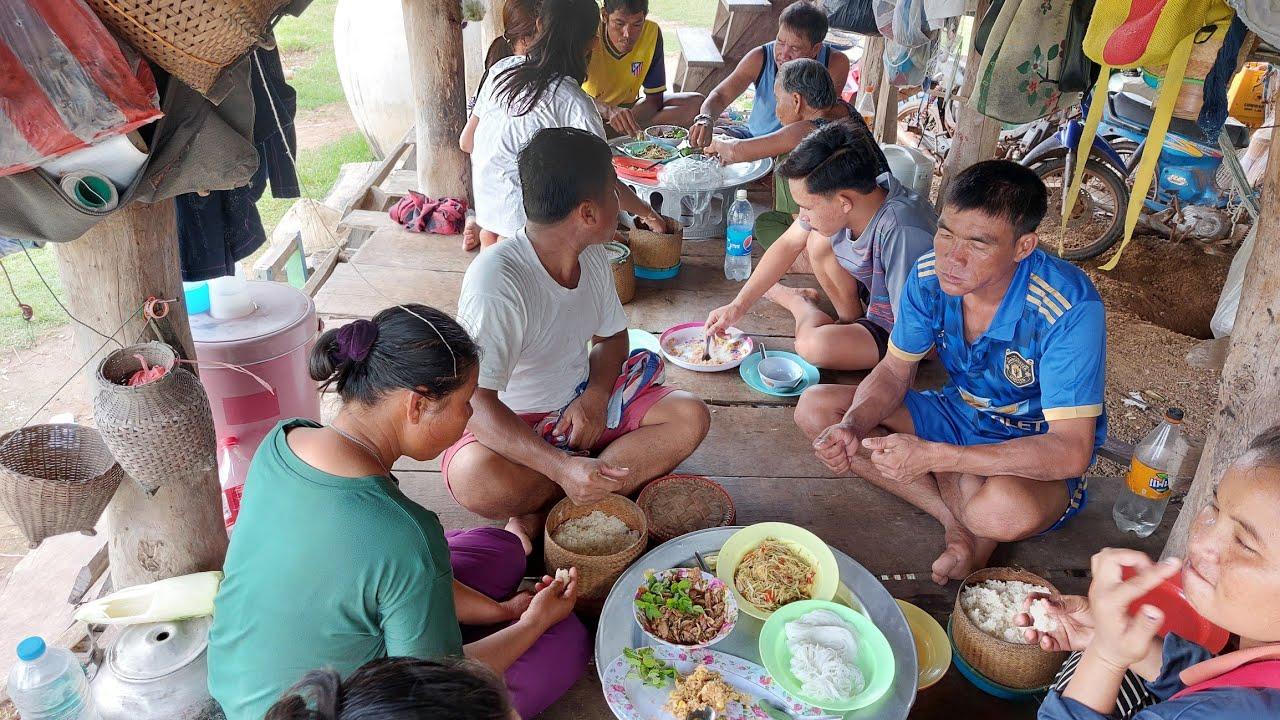 อาหารตอนเที่ยวหลังขื้นมาเกี่ยวข้าวเจ้าค่ะEp.251