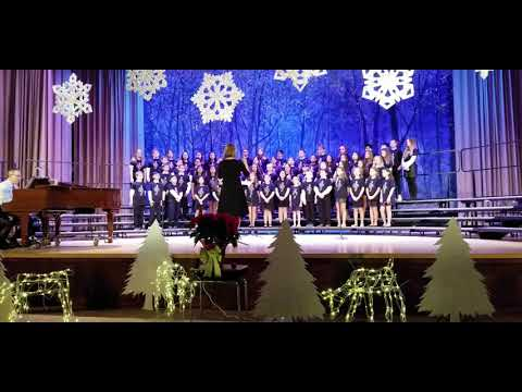 """Christmas in Manhattan"" - Shelter Rock Elementary School Chamber Chorus"