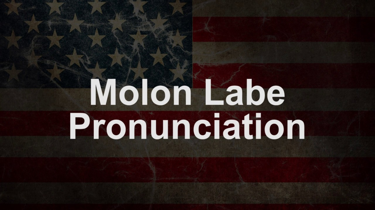 Molon Labe Meaning Pictures To Pin On Pinterest Thepinsta