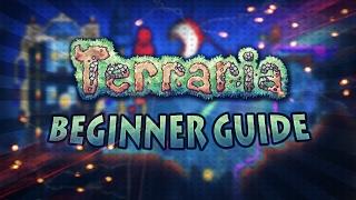 Terraria Beginner Guide [Tips And Tricks For Beginners] [#1]