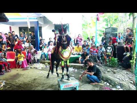terbaru Heboh Aktrasi Kuda Renggong Kuda Lumping  Paling keren AktrasinyaGAGAK GROUP