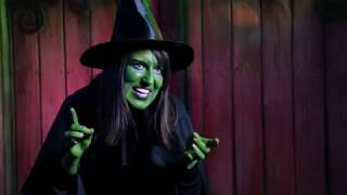Deesil Portfolio | PicCouture - PicCouture Halloween Promo | Wicked Witch