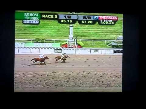 Drugged up Yankee horses by Atr's Matt Chapman