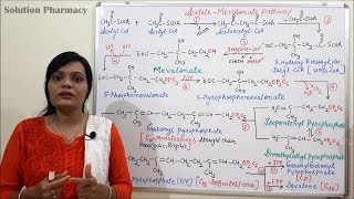 Acetate Pathway- Part 3 (Acetate Mevalonate Pathway- Steps and Reactions) in Hindi
