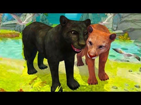 Видео Симулятор семьи пантеры играть онлайн бесплатно