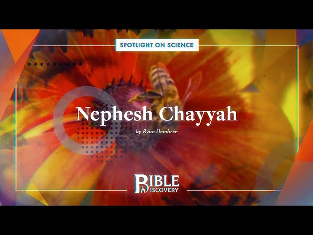 What is the Standard of Life According to the Bible? | Spotlight on Science | Nephesh Chayyah