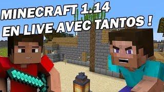 Minecraft Survie 2019: Minage et décoration des maisons et villa ! Live N°1