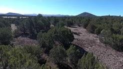 28 Acres Near Timber Knoll, Vernon, AZ