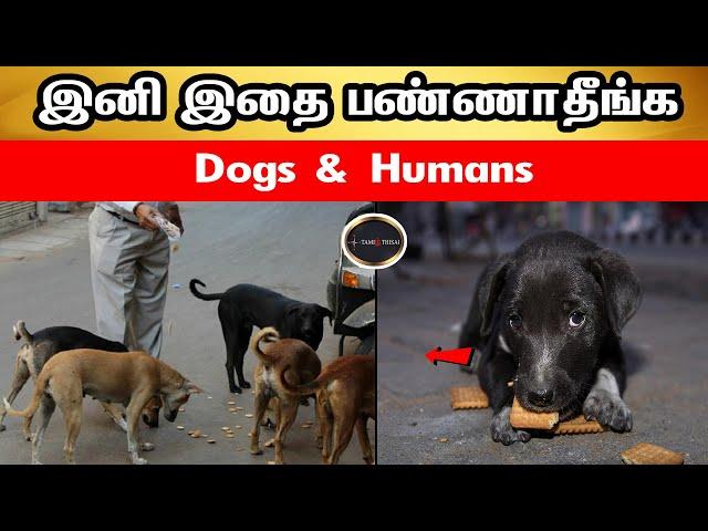 இனி இதை பண்ணாதீங்க   Dogs & Humans