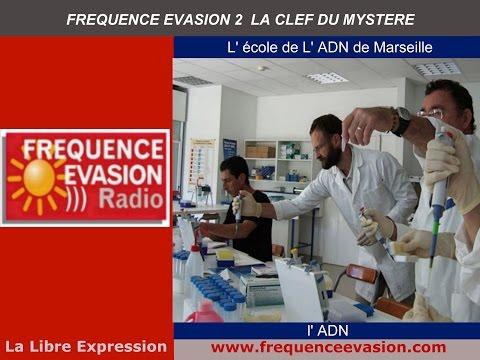 ECOLE de l'ADN de MARSEILLE - Interview Fréquence Evasion.