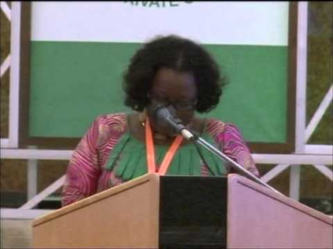 Day three of the UN Commission on Life Saving Commodities Abuja 2012