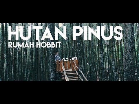 HUTAN PINUS & RUMAH HOBBIT YOGYAKARTA - IVLOG #12