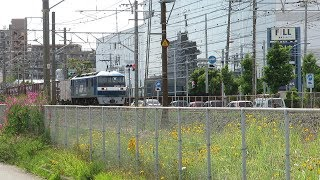 JR貨物・EF210形とEF65形すれ違い他(Japan Freight Railway)