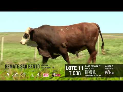LOTE 11 T 008