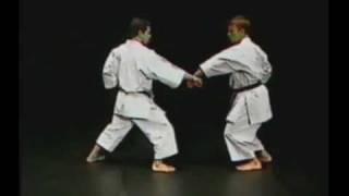 Kata Heian Sandan - Michael Milon