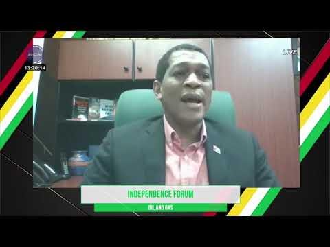 "Guyana exploring ""bringing gas to shore"" – Energy Director"