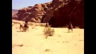 Louani Idar - Family Holiday:Riding a Dromedary Camel in Jordan Desert
