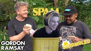 xQc Reacts to Gordon Ramsay Makes SPAM Scrambled Eggs in Hawaii | Scrambled
