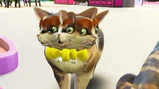 I Shouldn't Have Cloned My Cat 18 Times... - The Sims 4