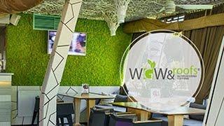 Декор ресторана стабилизированным мхом(, 2016-10-07T13:20:03.000Z)