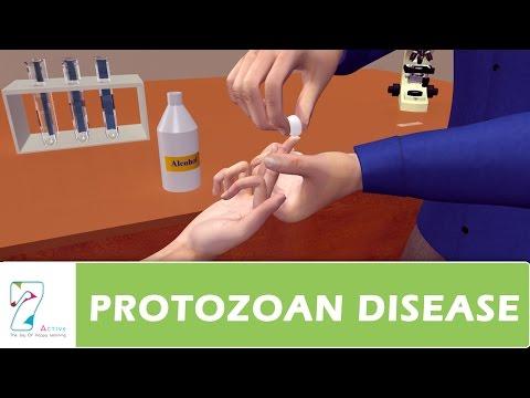PROTOZOAN DISEASE PART 03