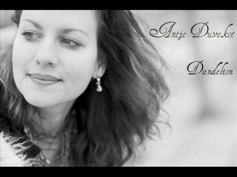 Antje Duvekot- Dandelion