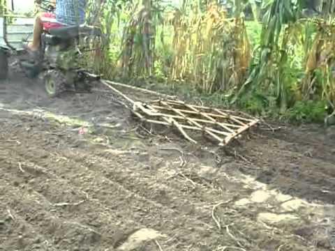 МТЗ 132Н копаем картошку ч.2 - YouTube