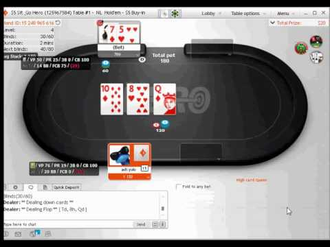 Party poker sit and go hero platinum play mobile casino download