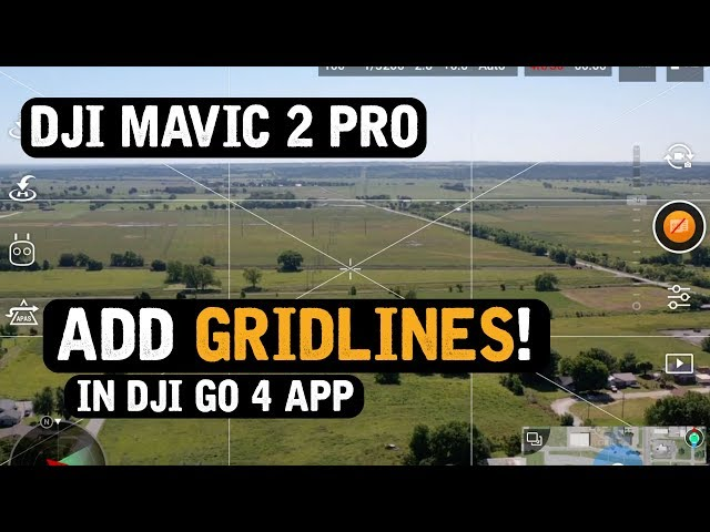 DJI Mavic 2 Pro / Add GRID LINES in DJI Go 4 App! (Tutorial)