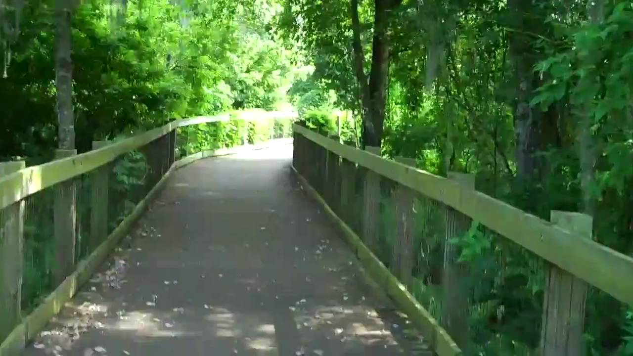 walking in the oakland nature preserve shade youtube