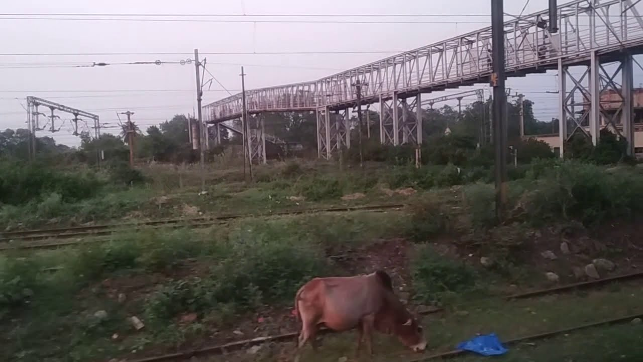 Download Andal Railway Bridge for 12No. Dangaal. Thousands of people uses this daily.