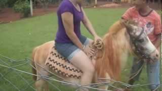 Beautiful Pony Rider